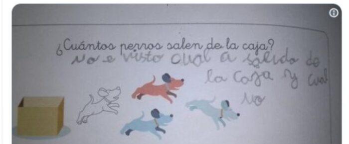 ¿Cuántos perros salen de la caja?